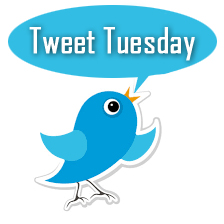 tweet-tuesday